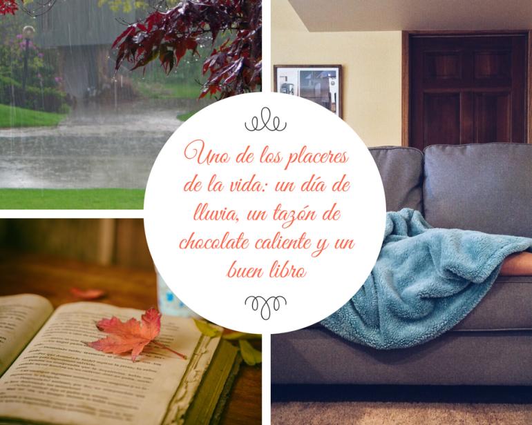 Uno de los placeres de la vida_ un día de lluvia, un tazón de chocolate caliente y un buen libro